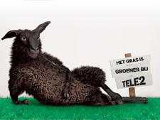 Tele2 gaat voor het eerste glasvezel aanbieden aan consumenten